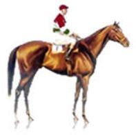 Equine-Webdesign.co.uk